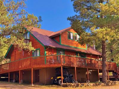 Single Family Home For Sale: 101 Convair Dr