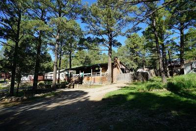 Single Family Home For Sale: 206 Hemlock Cr #II