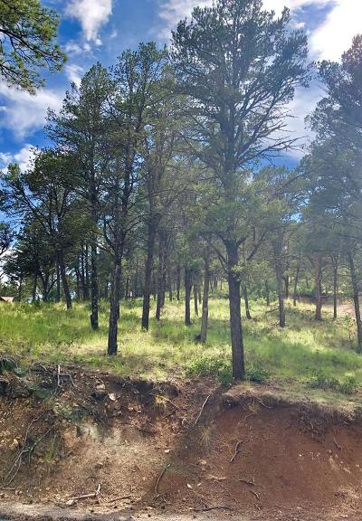 Ruidoso NM Residential Lots & Land For Sale: $17,000