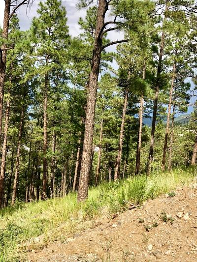 Ruidoso NM Residential Lots & Land For Sale: $12,000