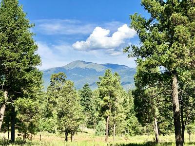 Ruidoso NM Residential Lots & Land For Sale: $245,000