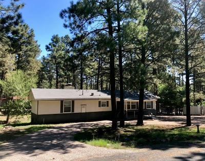 Ruidoso NM Manufactured Home For Sale: $130,000
