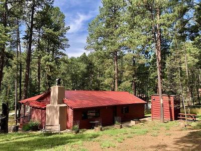 Ruidoso NM Single Family Home For Sale: $267,500