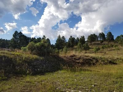 Ruidoso NM Residential Lots & Land For Sale: $99,800