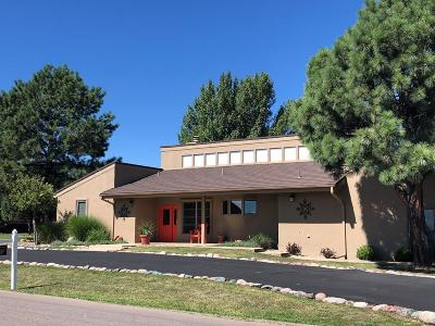 Single Family Home For Sale: 1007 High Mesa Rd #1