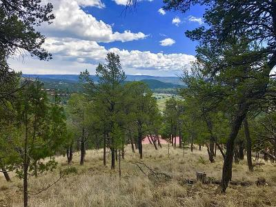 Ruidoso NM Residential Lots & Land For Sale: $17,500