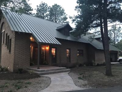 Single Family Home For Sale: 1345 High Mesa Rd