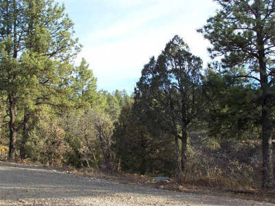Residential Lots & Land For Sale: Shroyer Drive, Laguna Vista