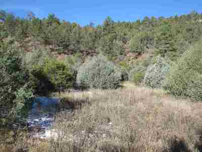 Residential Lots & Land For Sale: 405 County Road B-44-A