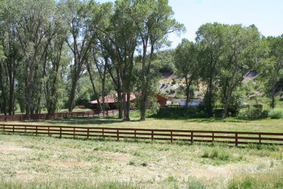 Rio Arriba County Single Family Home For Sale: 16159 Highway 84/64