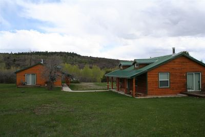 Rio Arriba County Single Family Home For Sale: 18331 Highway 64 East