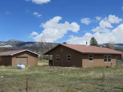 Chama Single Family Home For Sale: Rio Chama Est W Llano Road
