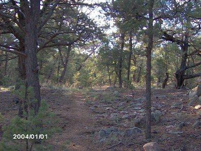 Santa Fe Residential Lots & Land For Sale: La Posta Way (La Canada ) Tract 9 (A) #Vacant L