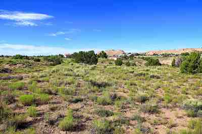 Residential Lots & Land For Sale: 18444 E Us 84 285 #C