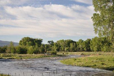 Farm & Ranch For Sale: Cañones Creek Ranch