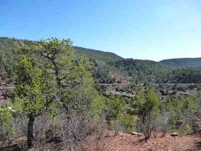 Residential Lots & Land For Sale: 98 Valencia Ranch Road