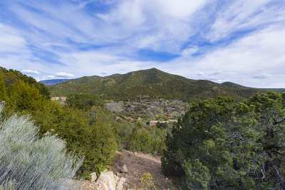 Residential Lots & Land For Sale: 1677 Cerro Gordo #8 #Lot 8