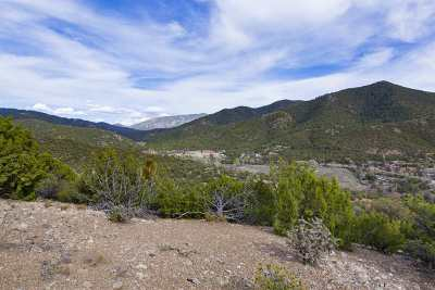 Residential Lots & Land For Sale: 1677 Cerro Gordo #10 #Lot 10