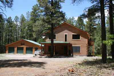 Rio Arriba County Single Family Home For Sale: 57 Rufous Ridge Road #Millston