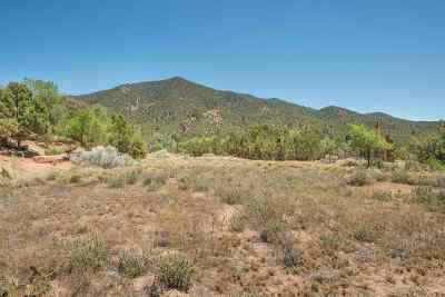 Residential Lots & Land For Sale: 1589 Cerro Gordo