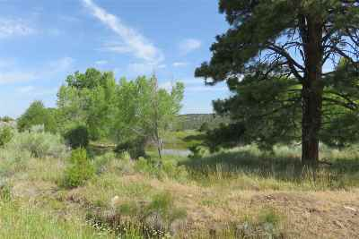 Rio Arriba County Single Family Home For Sale: 40 Private Drive 1301