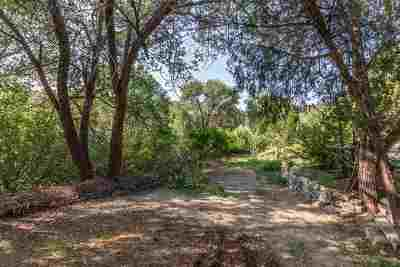 Residential Lots & Land For Sale: Tract 2 Camino Rincon