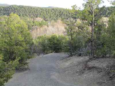 Residential Lots & Land For Sale: Tract 4 Camino Rincon