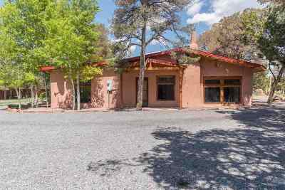 Single Family Home For Sale: 166 Nm State Road 50