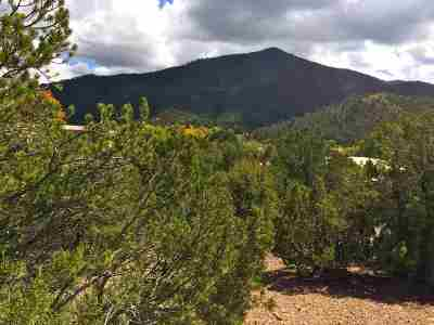 Residential Lots & Land For Sale: 1661-A Cerro Gordo