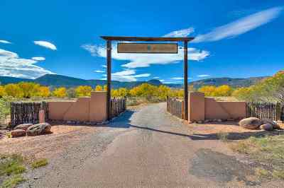 Abiquiu NM Single Family Home For Sale: $2,700,000
