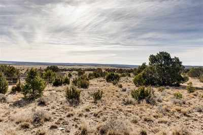 Residential Lots & Land For Sale: 1037 Ojo De La Vaca