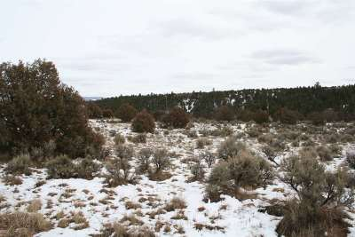 Residential Lots & Land For Sale: Overlook