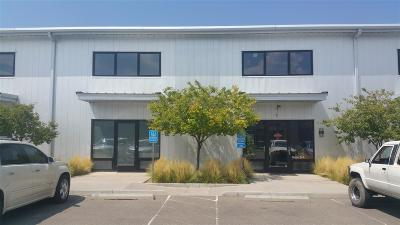 Commercial For Sale: 1221 Flagman Way #B-4