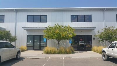 Commercial For Sale: 1221 Flagman Way #B-5