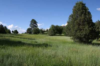 Residential Lots & Land For Sale: Off Cr 342