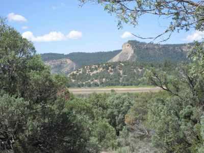 Residential Lots & Land For Sale: Juniper Lane, Pinion Ridge