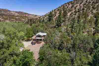 Rio Arriba County Single Family Home For Sale: 595-A Cr 194