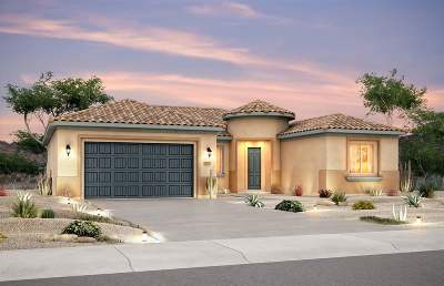 Single Family Home For Sale: 4750 Lluvia Encantada