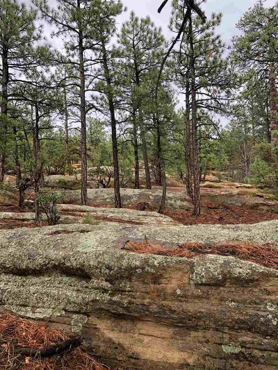 Residential Lots & Land For Sale: Nsn Tract B Pinon Ridge