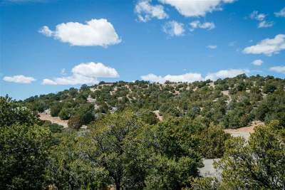 Residential Lots & Land For Sale: 4 Trails End
