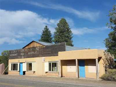 Rio Arriba County Single Family Home For Sale: 1132 Hwy 554