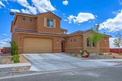 Rio Rancho Single Family Home For Sale: 617 SE Sierra Verde Way