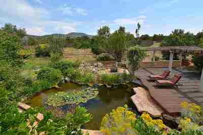 Single Family Home For Sale: 32 Apache Plume