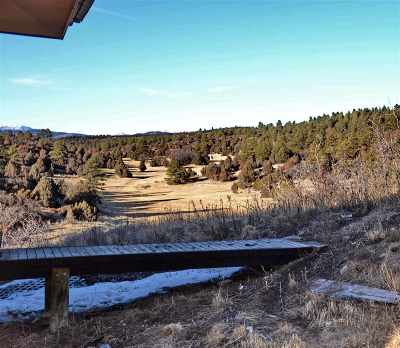 Rio Arriba County Single Family Home For Sale: 93 C County Road 342