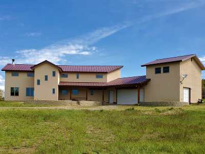 Rio Arriba County Single Family Home For Sale: 12 Horn Toad Road, Chama West