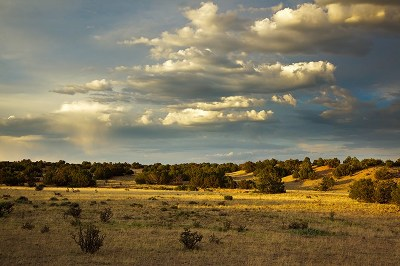 Galisteo Basin Prsrv Residential Lots & Land For Sale: 70 Southern Crescent