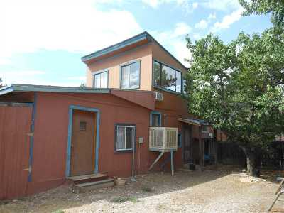 Rio Arriba County Single Family Home For Sale: 1193b County Rd 41