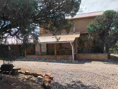 Rio Arriba County Single Family Home For Sale: 61 Christy Lane