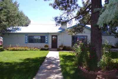 Single Family Home For Sale: 104 Vassar Street