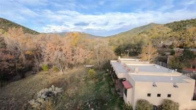 Santa Fe Single Family Home For Sale: 1301 C Canyon Road